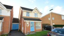 Link Detached House for sale in Denbeigh Place, Reading...