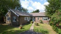 Bungalow for sale in Oakdene, Woodcote...