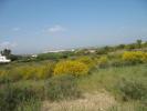 Plot for sale in Carvoeiro, Algarve...