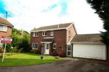 4 bedroom Detached home in Shetland Road  Haverhill