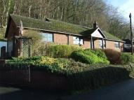 Bungalow for sale in Kinsley Road, Knighton...