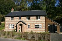 property to rent in TOLLARD ROYAL - Snowdrop Cottage