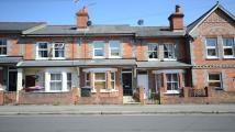 Terraced property to rent in Westfield Road, Caversham