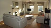 Apartment to rent in Treetops, Caversham