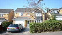 4 bed Detached property to rent in Tymawr, Caversham