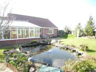 3 bed Detached Bungalow for sale in Old Forge Close, Woodton