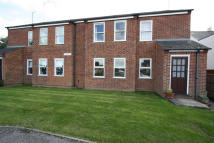 Apartment to rent in Fairfield Parade...