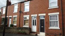 2 bed Terraced home to rent in Albert Avenue, Whitemoor...