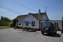 Detached Bungalow in Bude, Cornwall