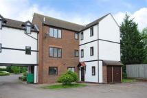 1 bedroom Flat in Robina Court...