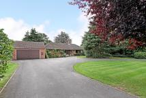 Bungalow in Avon Bank Drive...