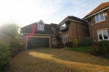 5 bed Detached home to rent in Northumberland Walk...