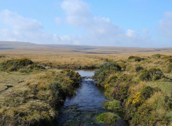 Dartmoor Stream