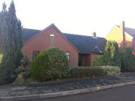 Detached Bungalow for sale in Thomas Flawn Road...