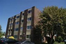 1 bedroom Apartment in Shaftoe Court...