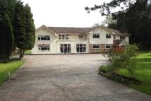 6 bedroom Detached home to rent in Brooks Drive, Hale Barns