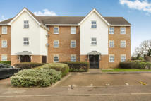 Flat to rent in Osprey Road...