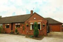 Thornley Park Road Semi-Detached Bungalow for sale