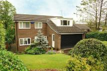 5 bed Detached property for sale in The Meadows, Grotton...