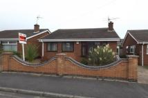 Bungalow to rent in Auckland Road, hucknall...
