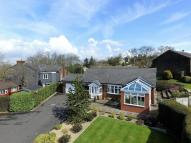 14 Mount View Road Detached Bungalow for sale