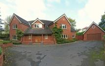 Rossmill Lane Detached property to rent