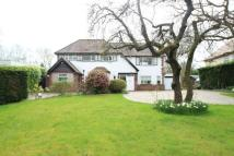 Detached property to rent in Hale Road, Hale Barns...