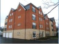property to rent in 11 Woodthorpe Mews