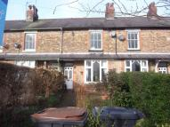 Terraced house to rent in MAGDALENS ROAD, RIPON...