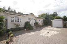 Bungalow for sale in Mitre Close, Shepperton...