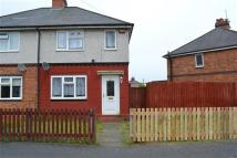 semi detached house to rent in Richard William Road...