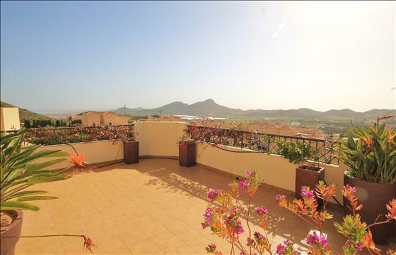 Roof Terrace Views