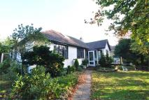 Detached Bungalow for sale in Holliers Hill...