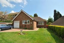 Detached Bungalow in Peartree Lane...