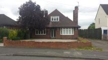 Detached Bungalow in 109 Middlecroft Road...