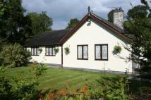 Bungalow in Mold, Flintshire