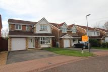 Detached house for sale in Beechfield Rise, Coxhoe...