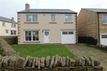 4 bedroom Detached home to rent in Bullfield, Westgate...