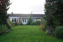 Bungalow for sale in Dove Close, Brandon...