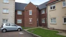 Apartment to rent in Regents Court, Gilesgate...