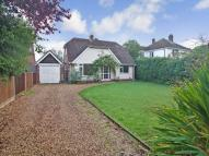 4 bed Detached property in South West Hayling, ,