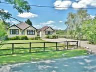 3 bedroom Detached Bungalow for sale in Marlpits Road, Purleigh...