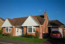 Detached Bungalow in Sible Hedingham, Essex