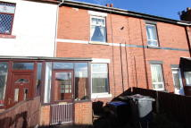 Terraced property to rent in Springfield Terrace...