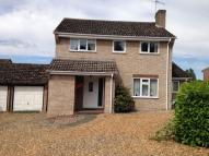 4 bed Detached home to rent in Campion Road, Thetford