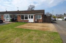 Terraced Bungalow for sale in Castle Close, Weeting