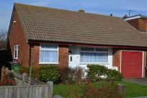 3 bedroom Semi-Detached Bungalow in Sycamore Close, Lydd