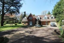 Detached home in Netley Firs Close...