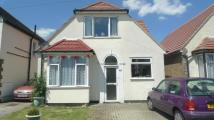 Detached Bungalow for sale in Park Avenue , Hounslow ...