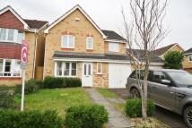 House Share in Triscombe Way...